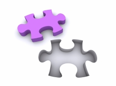 Jigsaw Puzzle coloured